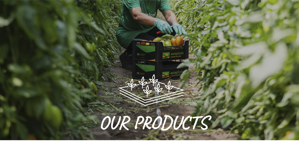 our_product
